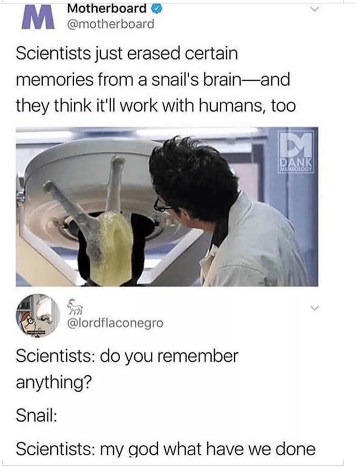 Joint - Motherboard @motherboard Scientists just erased certain memories froma snail's brain-and they think it'll work with humans, to0 DANK MELOLOGY @lordflaconegro Scientists: do you remember anything? Snail: Scientists: my god what have we done