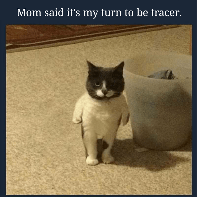 """Caption that reads, """"Mom said it's my turn to be tracer"""" above a pic of a cat standing up on two feet"""