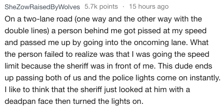 Text - SheZowRaisedByWolves 5.7k points 15 hours ago On a two-lane road (one way and the other way with the double lines) a person behind me got pissed at my speed and passed me up by going into the oncoming lane. What the person failed to realize was that I was going the speed limit because the sheriff was in front of me. This dude ends up passing both of us and the police lights come on instantly like to think that the sheriff just looked at him with a deadpan face then turned the lights on