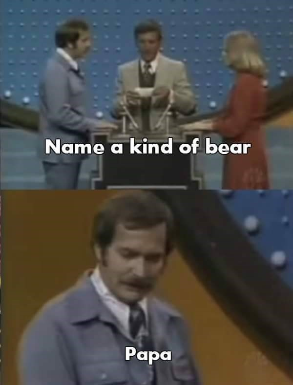 Papa bear is a kind of bear