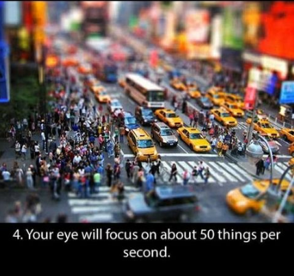 Metropolitan area - 4. Your eye will focus on about 50 things per second.