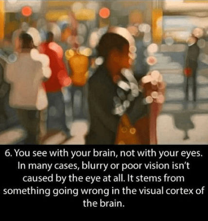 People - 6. You see with your brain, not with your eyes. In many cases, blurry or poor vision isn't caused by the eye at all. It stems from something going wrong in the visual cortex of the brain.
