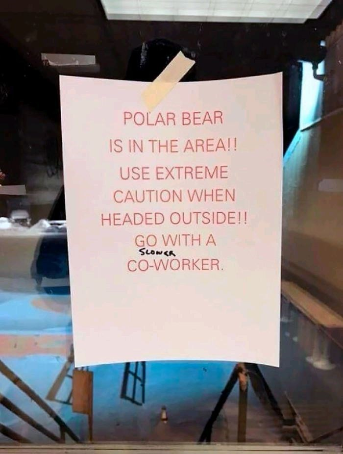 "Sign that reads, ""Polar bear in the area! Use extreme caution when headed outside! Go with a ""slower"" coworker"""