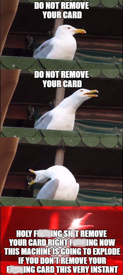 'Country Roads' seagull telling you not to remove your debit card during a transaction, and then screaming for you to remove it