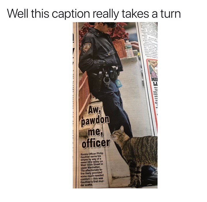 meme image of a cat cuddling up next to a police officer