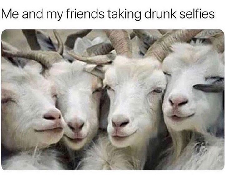 meme about taking drunk selfies with friends