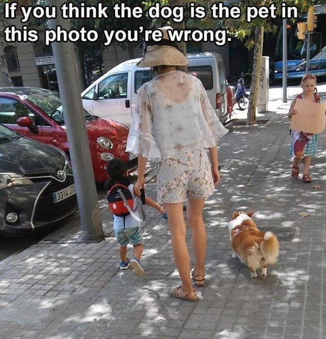 Street fashion - If you think the dog is the pet in this photo you're wrong EDX 33 14 J