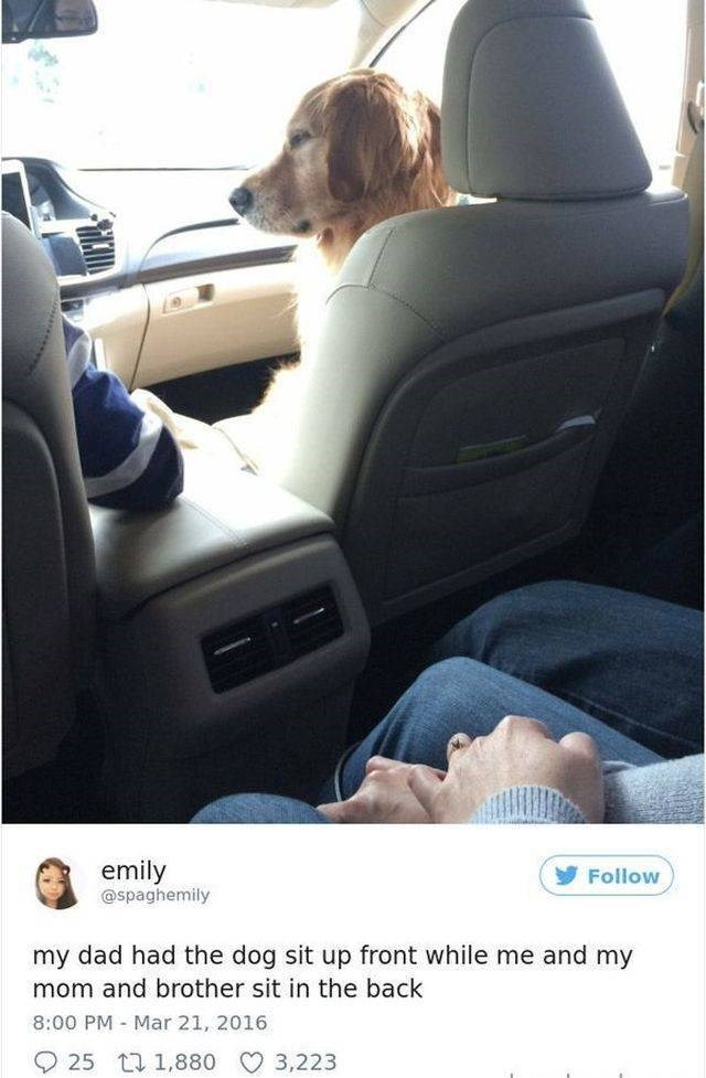Vehicle - emily @spaghemily Follow my dad had the dog sit up front while me and my mom and brother sit in the back 8:00 PM Mar 21, 2016 25 t 1,880 3,223
