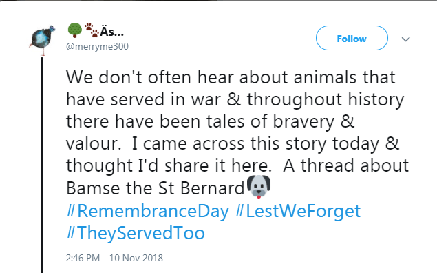 Text - Äs... Follow @merryme300 We don't often hear about animals that have served in war & throughout history there have been tales of bravery & valour. I came across this story today & thought I'd share it here. A thread about Bamse the St Bernard #RemembranceDay #LestWeForget #TheyServedToo 2:46 PM - 10 Nov 2018