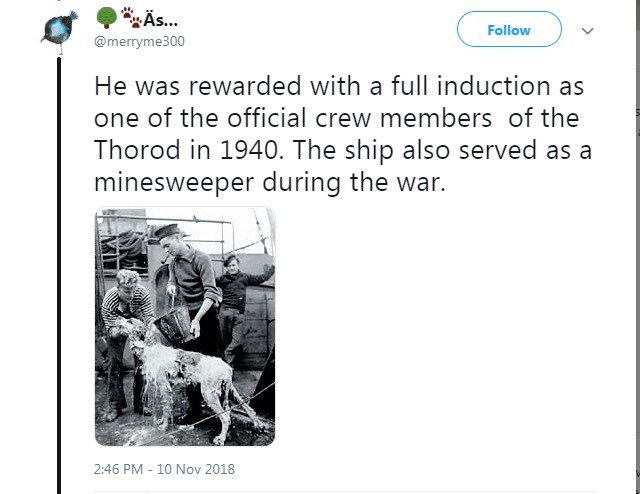 Text - A... Follow @merryme300 He was rewarded with a full induction as one of the official crew members of the Thorod in 1940. The ship also served as a minesweeper during the war. 2:46 PM 10 Nov 2018
