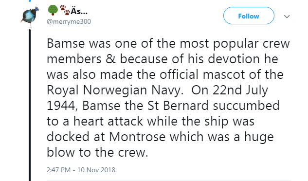Text - A... Follow @merryme300 Bamse was one of the most popular crew members & because of his devotion he was also made the official mascot of the Royal Norwegian Navy. On 22nd July 1944, Bamse the St Bernard succumbed to a heart attack while the ship was docked at Montrose which was a huge blow to the crew. 2:47 PM - 10 Nov 2018