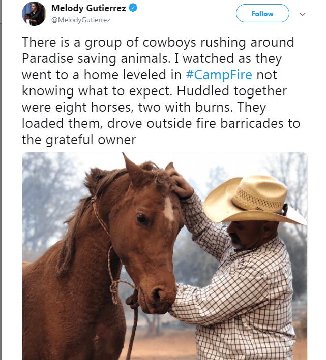 Tweet about cowboys saving horses during California fires