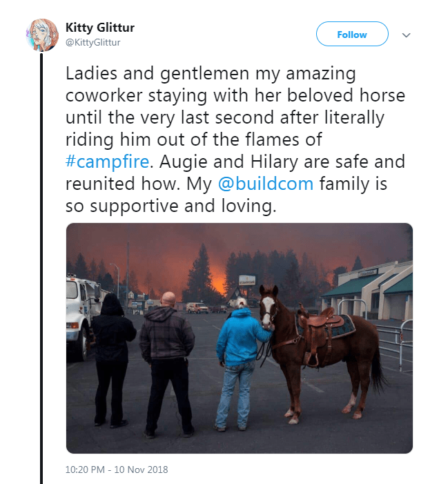 Tweet about coworker saving horse from California fires