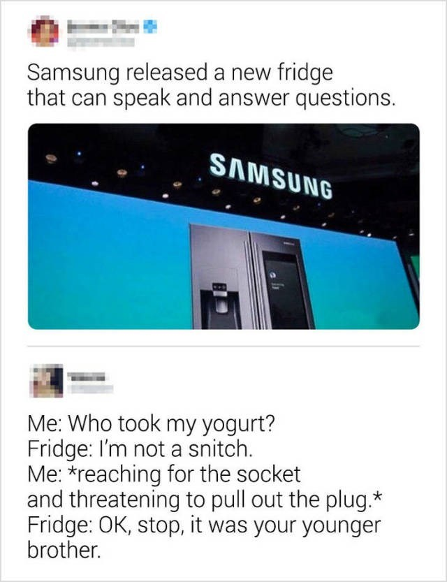 Text - Samsung released a new fridge that can speak and answer questions. SAMSUNG Me: Who took my yogurt? Fridge: I'm not a snitch. Me: *reaching for the socket and threatening to pull out the plug. Fridge: OK, stop, it was your younger brother.