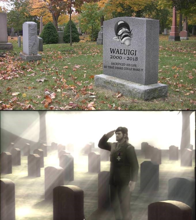 meme about paying respect to dead Waluigi