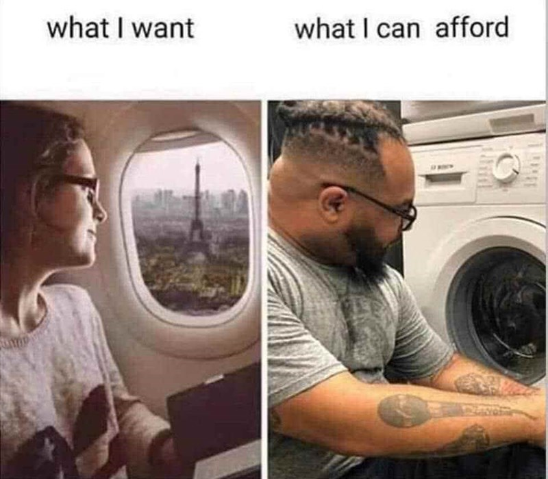 meme comparing dreaming of flying to Paris to the reality of staring through washing machine door