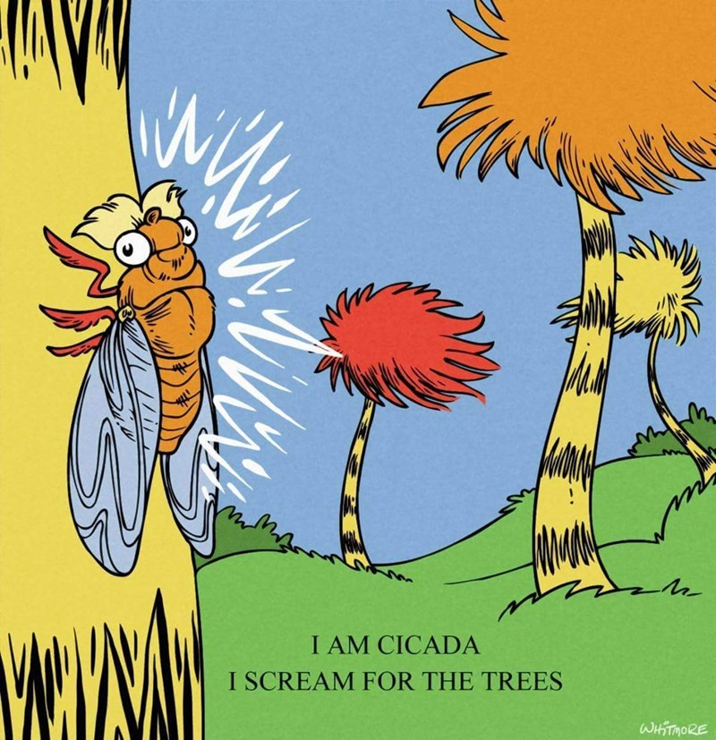 drawing from Dr Seuss book of cicada screaming for the trees