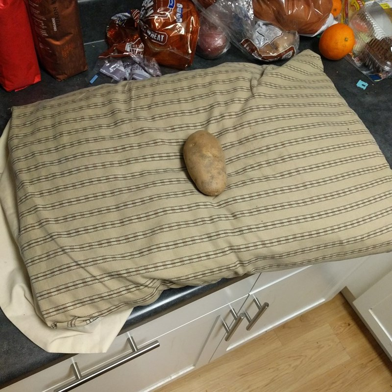 Disney's sleeping beauty represented by potato placed on pillow