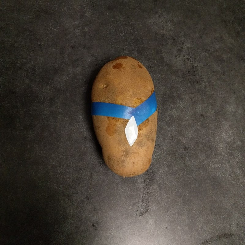 Disney's Pocahontas represented by potato wearing blue necklace with white shard