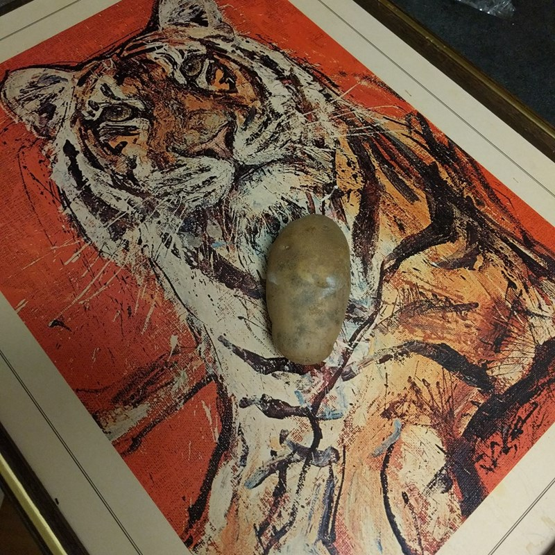A potato on top of a painting of a tiger, representing Jasmine from 'Aladdin'