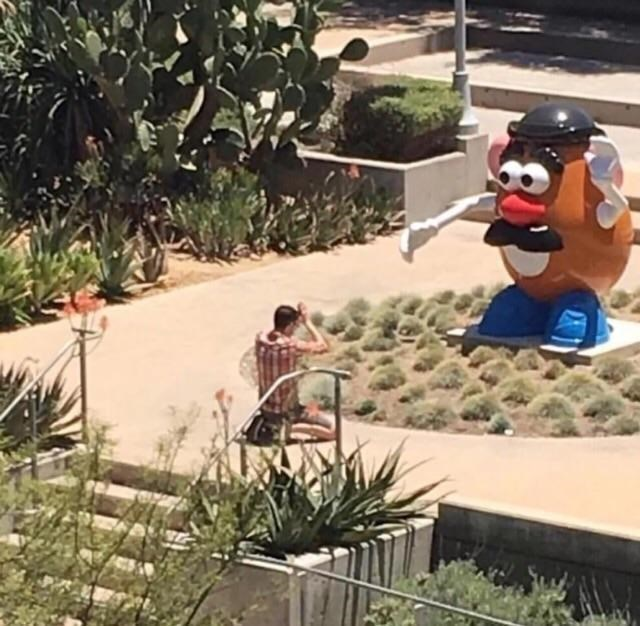 picture of person in dessert setting praying in front of Mr Potato Head statue
