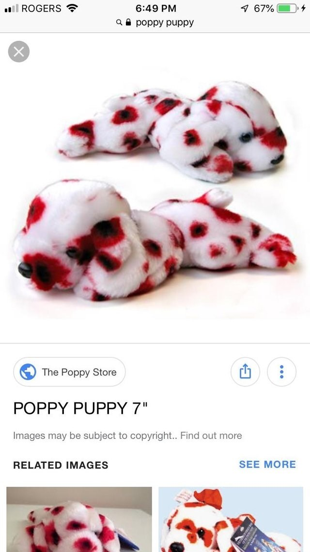 image of a spotted stuffed dog and the title says 'poppy puppy'