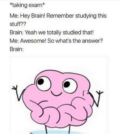meme about taking an exam and not remembering what you studied