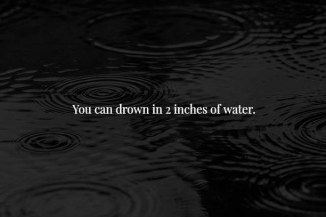 Black - You can drown in 2 inches of water.