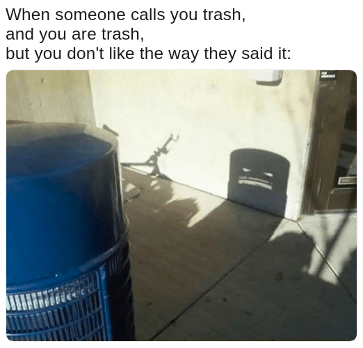 angry trash can's shadow meme about being trashy