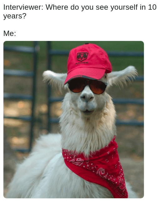 llama cool dude as goal for 10 years