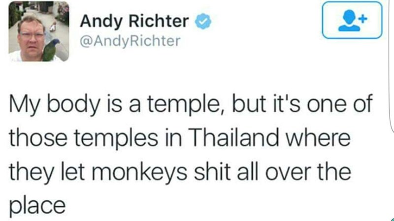 Tweet by Andy Richter about your body being a temple but like those in Thailand that the monkeys poop all over