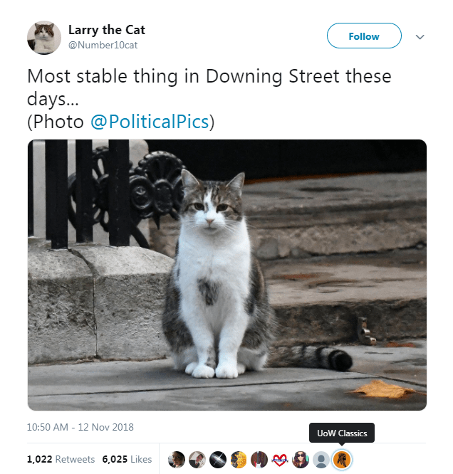 Cat - Larry the Cat @Number10cat Follow Most stable thing in Downing Street these days... (Photo @PoliticalPics) 10:50 AM 12 Nov 2018 UoW Classics 1,022 Retweets 6,025 Likes