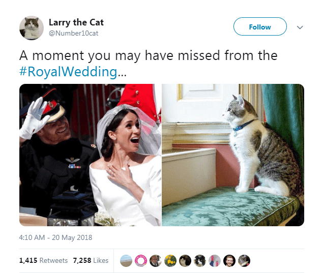 Cat - Larry the Cat Follow @Number10cat A moment you may have missed from the #RoyalWedding.. 4:10 AM - 20 May 2018 1,415 Retweets 7,258 Likes