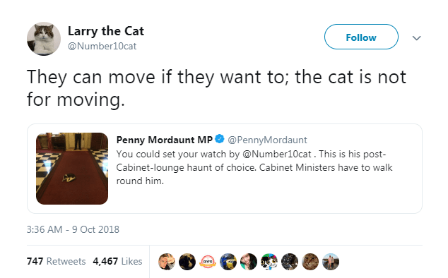 Product - Larry the Cat Follow @Number10cat They can move if they want to; the cat is not for moving Penny Mordaunt MP @PennyMordaunt You could set your watch by @Number10cat. This is his post- Cabinet-lounge haunt of choice. Cabinet Ministers have to walk round him. 3:36 AM 9 Oct 2018 747 Retweets 4,467 Likes fare