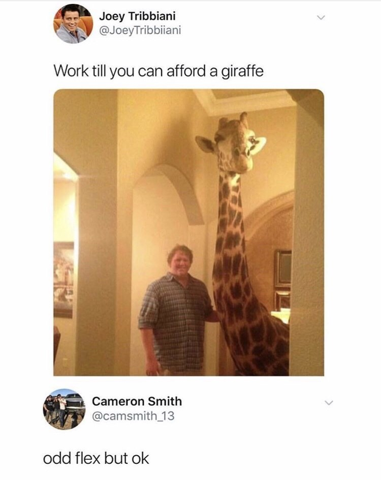 post about working until you can afford a giraffe