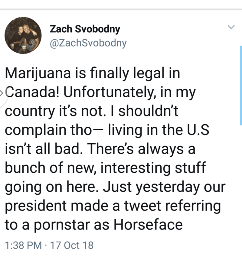 tweet post about living in the USA and trump referring to a pornstar as horseface by: @ZachSvobodny