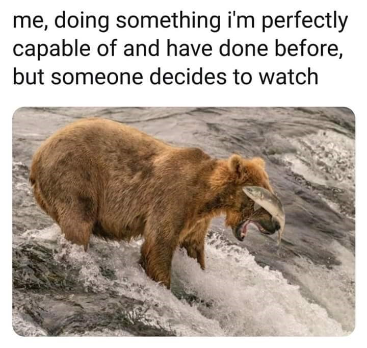 meme about when someone watches you do something it goes wrong