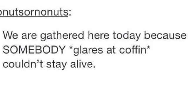 """Tumblr post that reads, """"We are gathered here today because SOMEBODY *glares at coffin* couldn't stay alive"""""""