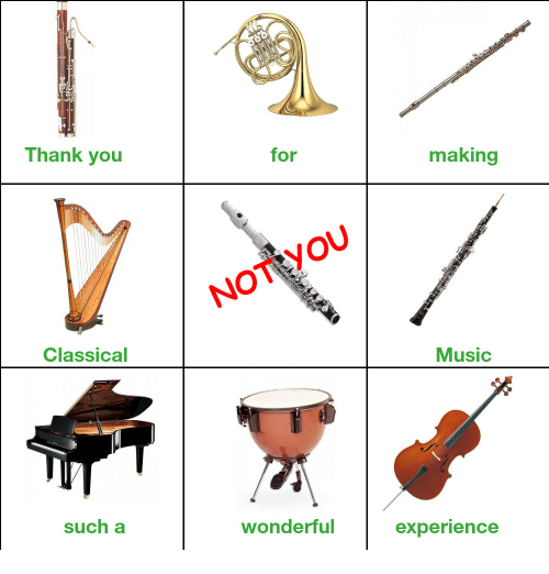 not you meme about the instruments that make classical music a wonderful experience