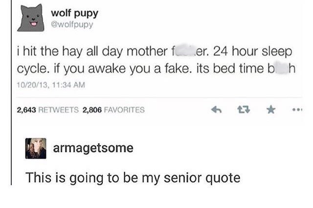 tweet post about sleeping all day and choosing it as a senior quote