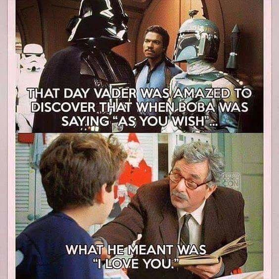 meme image about Darth Vader discovering that when boba said as you wish, he meant i love you