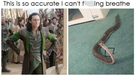 """Caption that reads, """"This is so accurate I can't f*cking breathe"""" above a pic of Loki with his hands on his hips, next to a pic of a snake with little arms drawn on to look the same"""