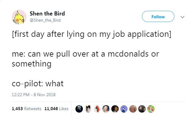 Text - Shen the Bird Follow @Shen_the_Bird [first day after lying on my job application] me: can we pull over at a mcdonalds or something co-pilot: what 12:22 PM - 8 Nov 2018 1,453 Retweets 11,046 Likes