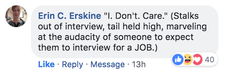 """Text - Erin C. Erskine """"I. Don't. Care."""" (Stalks out of interview, tail held high, marveling at the audacity of someone to expect them to interview for a JOB.) 40 Like Reply Message 13h"""