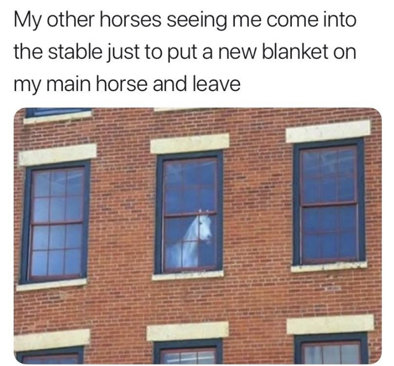 RDR2 meme about only taking care of your main horse and ignoring the others