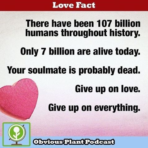 "fake ""love fact"" about giving up on love because your soulmate is probably dead"