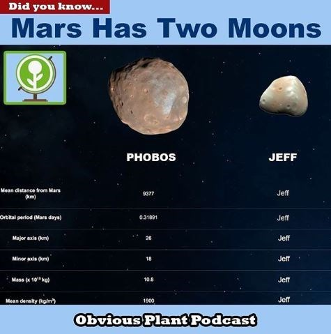 "fake poster showing facts about Mars' second moon ""Jeff"""