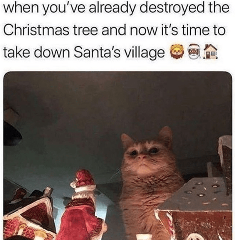 Caturday meme about cats destroying Christmas decorations
