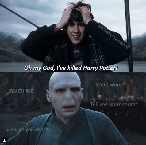 Meme about The Snape wants to learn how to kill Harry Potter