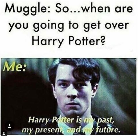 "Harry Potter meme with caption that reads, ""Muggle: So when are you going to get over Harry Potter? Me: ..."" above a still of Tom Riddle saying, ""Harry Potter is my past, my present and my future"""